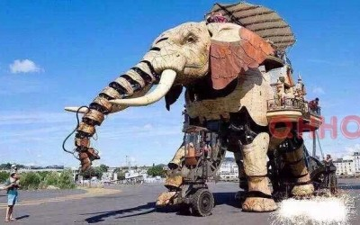 成都机械大象出租电话 巡游大象出租